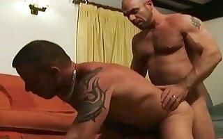 older bearded gay hunks having incredible sex